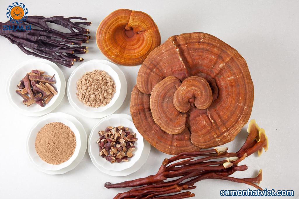 Nấm linh chi có thể chế biến nhiều món ăn