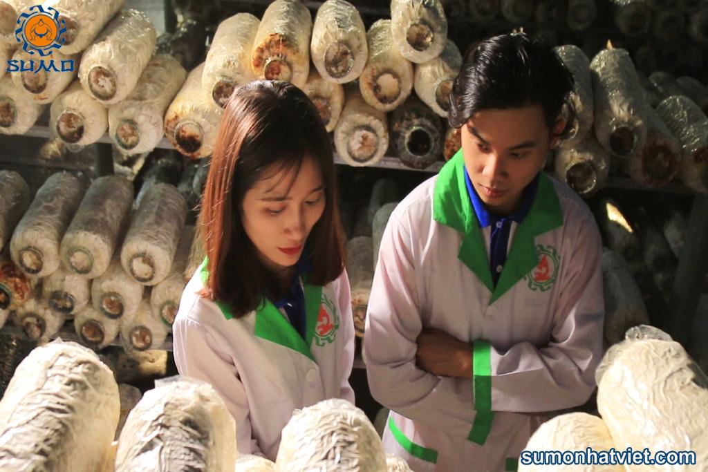 Cán bộ nghiên cứu tham quan chia sẻ kinh nghiệm tại trại nấm