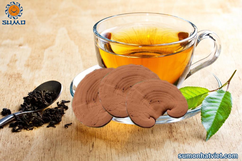 Có nên uống nấm linh chi thường xuyên không?