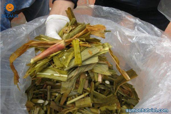 Tác dụng của mật rỉ đường Sumo sử dụng trong chăn nuôi gia súc, gia cầm