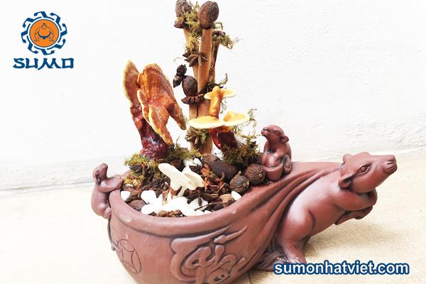 bonsai phong thủy để bàn