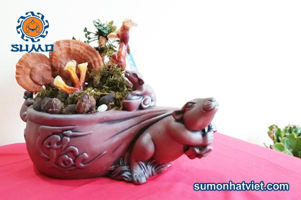 Bonsai thảo mộc thơm