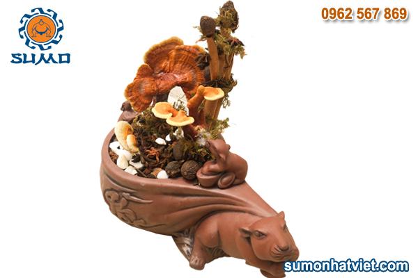 Bonsai linh chi hình chuột