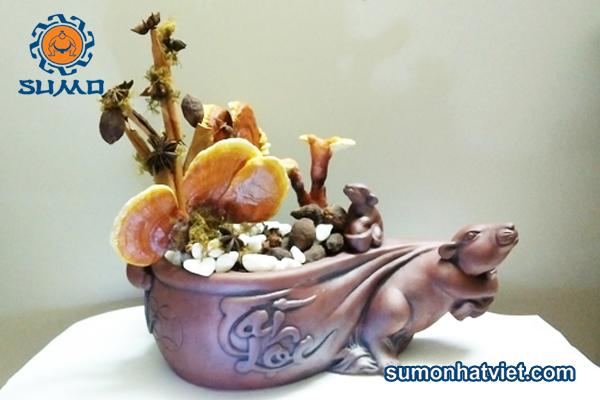 linh chi bonsai tài lộc