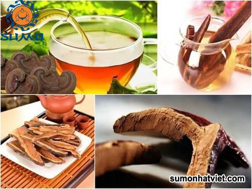 Tác dụng của nấm linh chi và cách dùng hiệu quả nhất