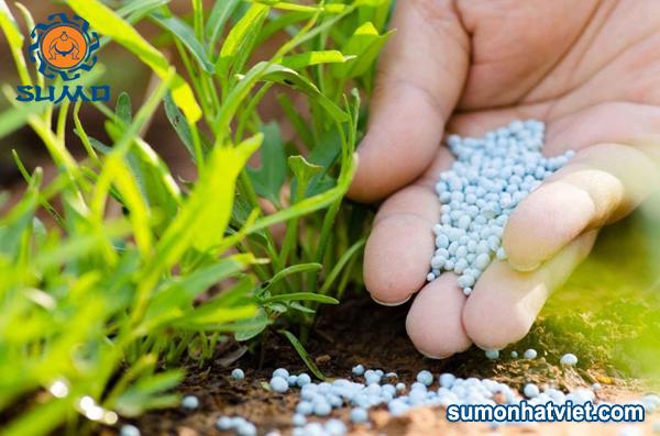 Sử dụng phân hóa học cho cây trồng