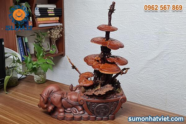 Bonsai nấm linh chi hương quế (02)