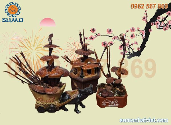 Nấm bonsai thảo mộc phong thủy hương thơm