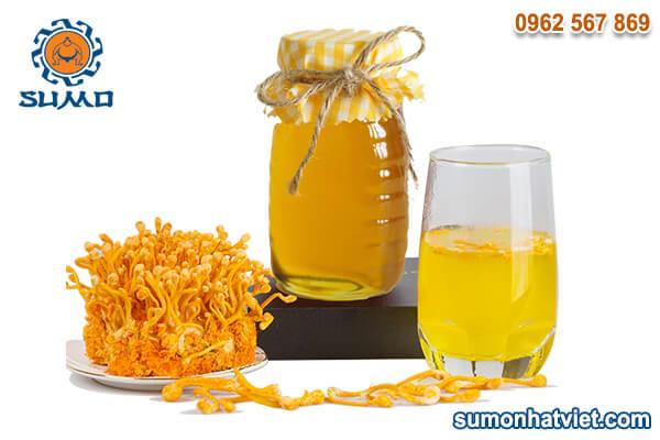 Sử dụng đông trùng hạ thảo mật ong