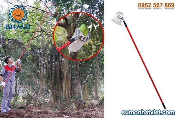 Dụng cụ hái trái cây trên cao đa năng SUMO3M